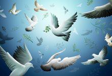 معاملة غير المسلم في السلم والحرب