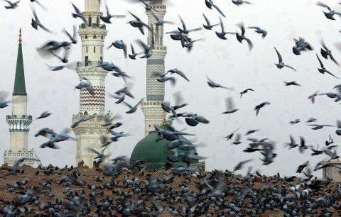 Detalle de la Mezquita del Profeta en Medina
