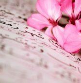 ¿Considera el Islam a las mujeres inferiores o deficientes en la religión, el razonamiento y el testimonio?