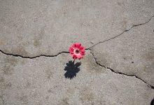 En el viaje hacia Dios, el arrepentimiento y la esperanza van de la mano
