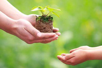 Toda buena acción es caridad y solidaridad