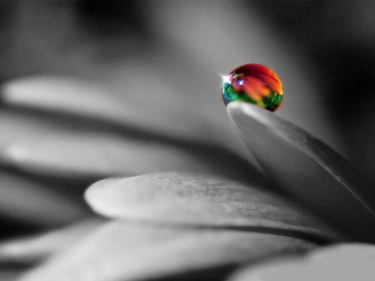 La creencia es una tecnología de transformación que lleva al ser humano a entender la existencia como orden y armonía dentro del aparente caos