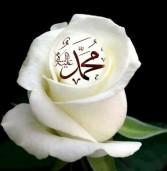 Ang Kaarawan ni Propeta Muḥammad (video)