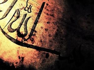 Allah creatie