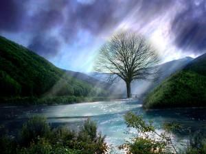 Gods-Beauty-god-the-creator-20147026-1024-768