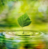 Prophet Muhammad & Environment