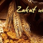 The Blessings behind Zakah