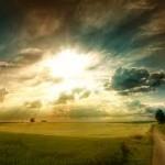 sunlight-nature