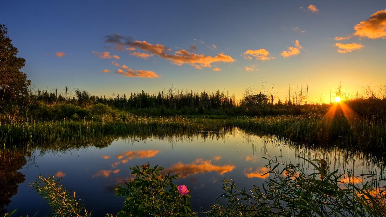 sky_nature_purity