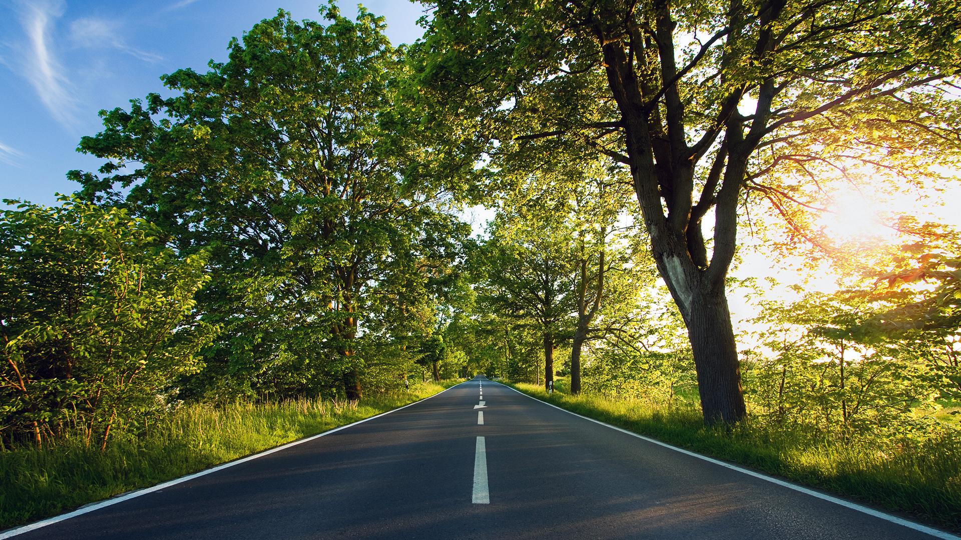 road_nature