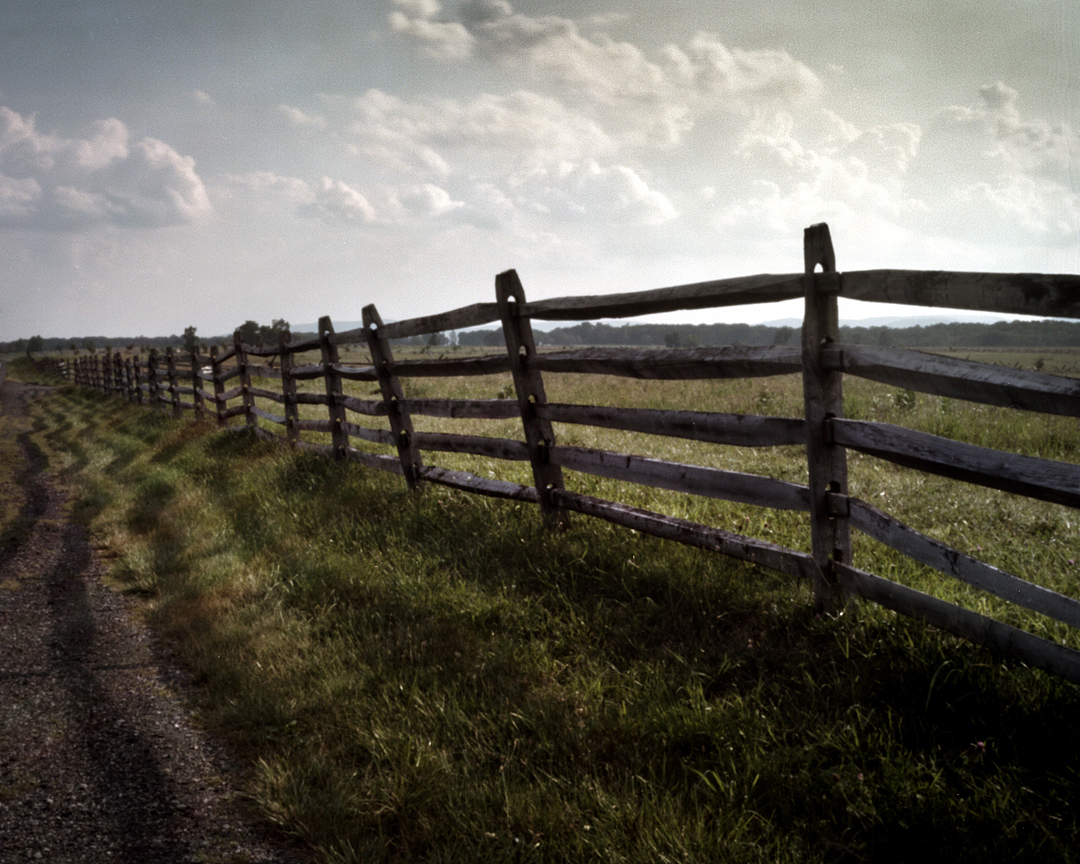nature_fence