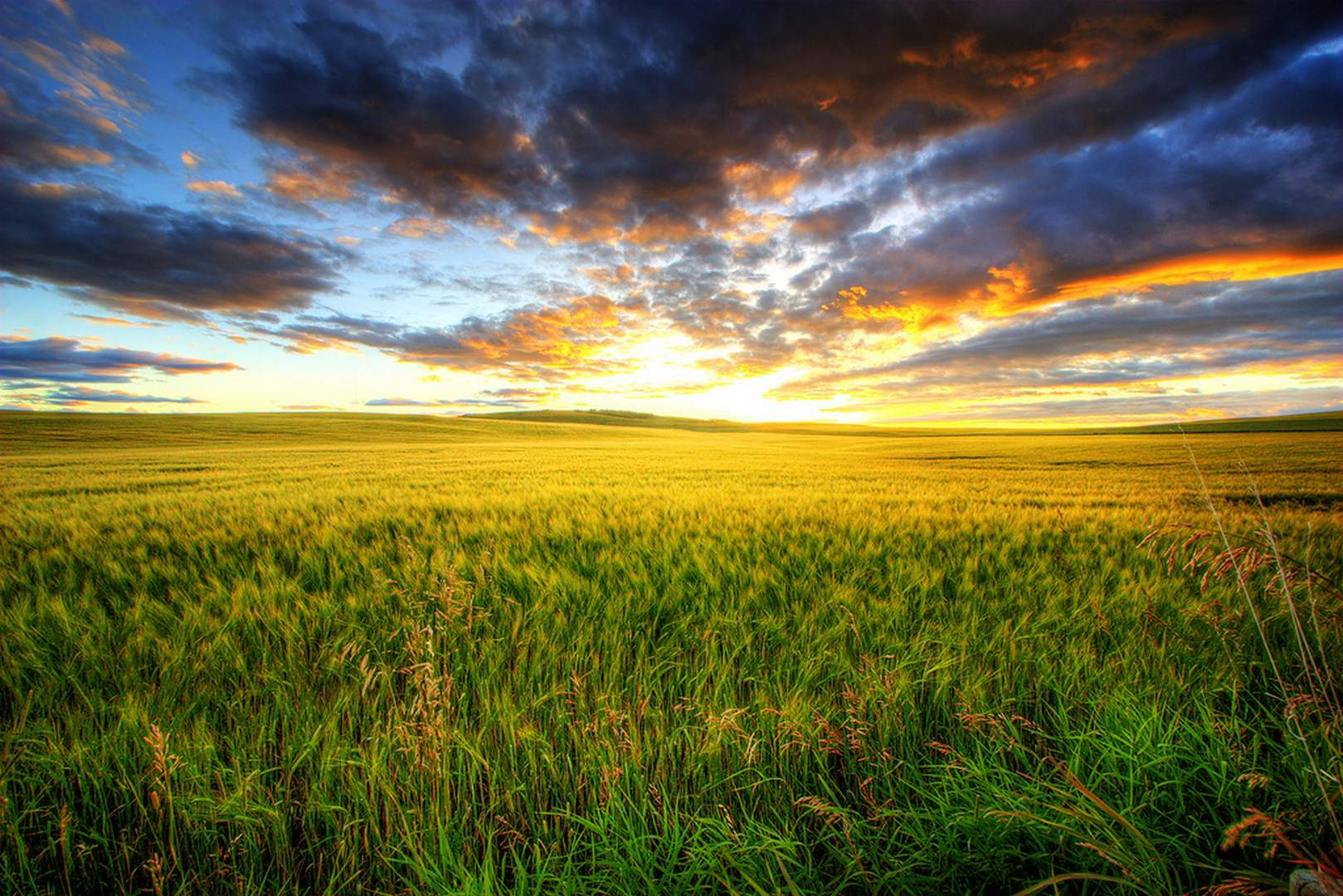 sunset-nature
