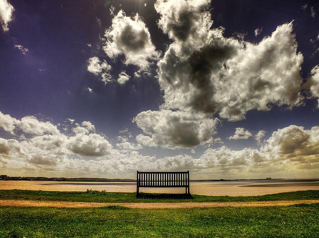 nature seat