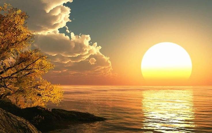nature_peace