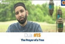 Prayers of the Pious 15- The Prayer of a Tree