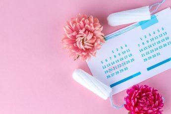 Legal Rulings Concerning Menstruation
